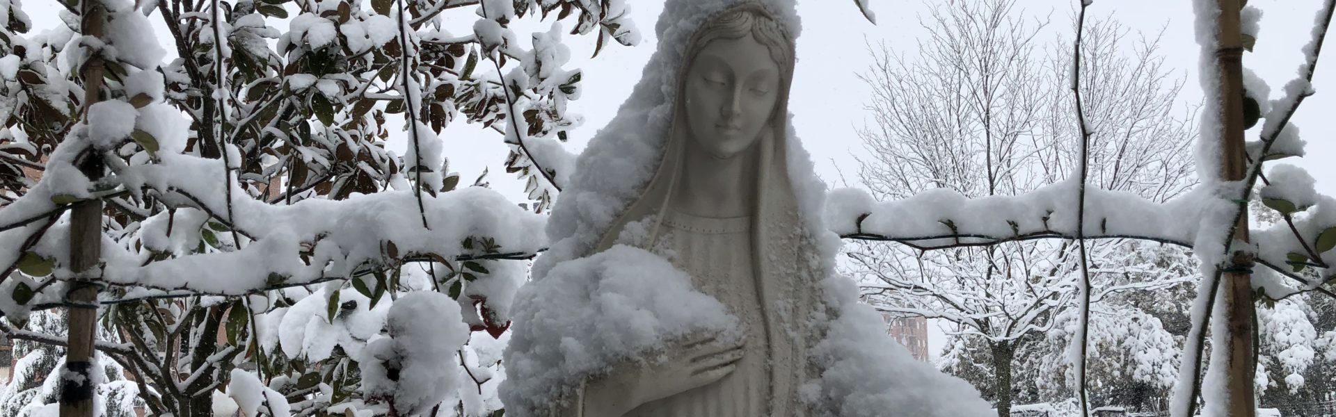 Maria a te cerchiamo rifugio…